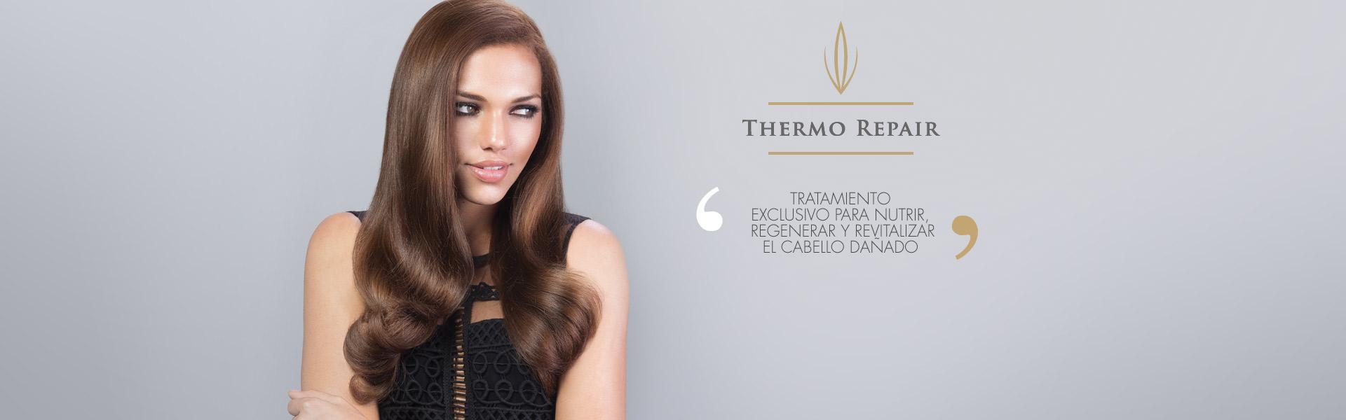 thermo_repair_es